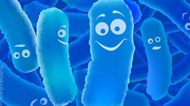 Probiotics Wasting Your Money Not If You Know 3 Things